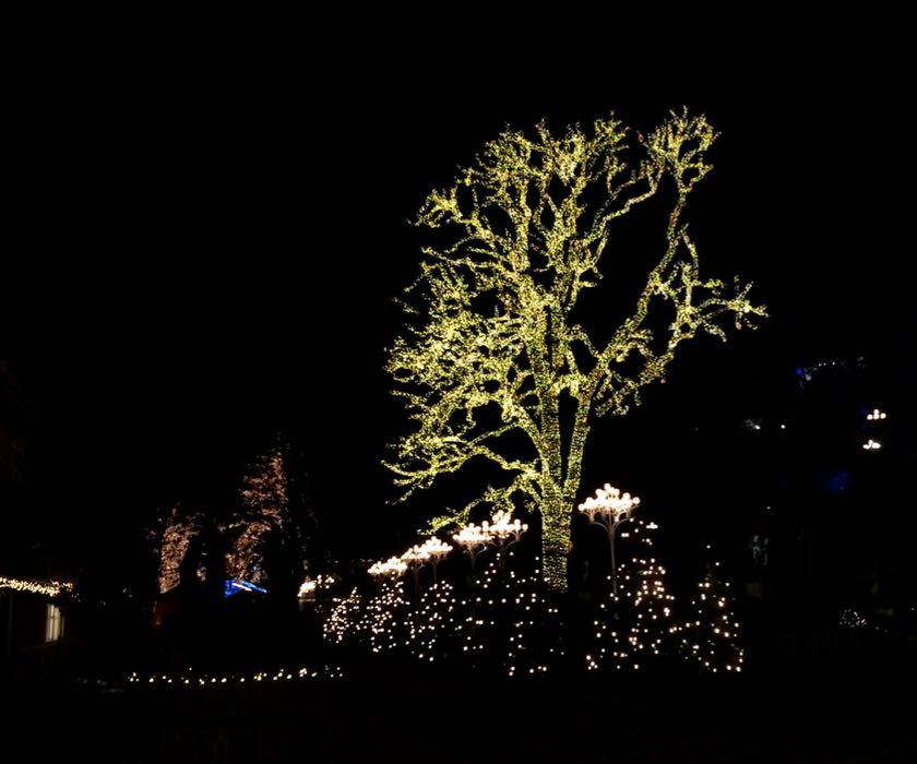 Der Liseberg Vergnügungspark wird immer weihnachtlich geschmückt.