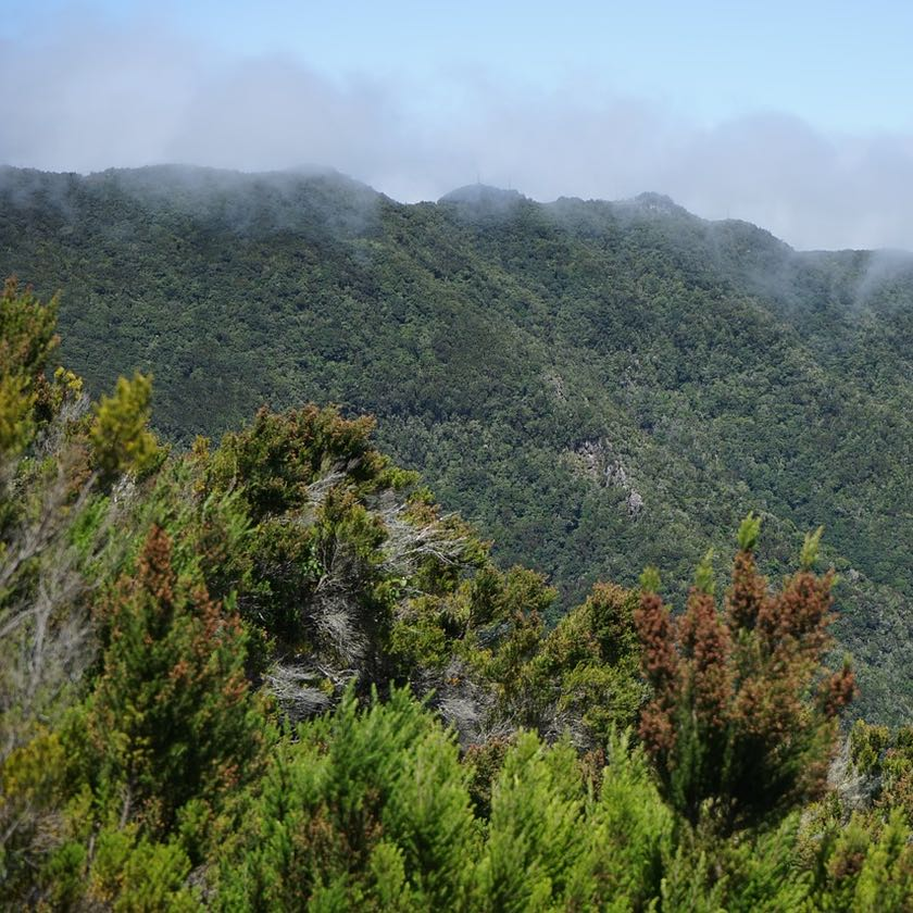 Paradiesisch: das Anaga Gebirge auf Teneriffa