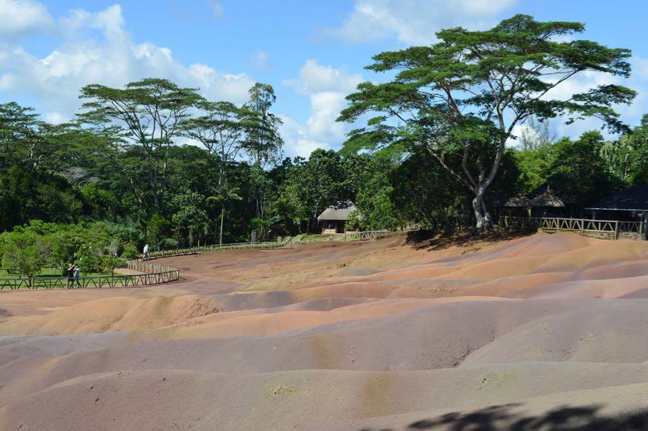 Die siebenfarbige Erde liegt umgeben von einem Tropenwald.